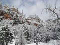Snow in West Fork of Oak Creek Canyon (3910794390).jpg