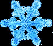 Snowflake11 2