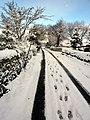 Snowy lane in Northumberland-November 2010.jpg