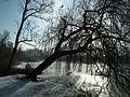 Solacki Park Poznan, winter 2017.jpg