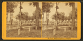 Soldiers' cemetery, Arlington, by Kilburn Brothers 4.png