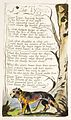 Songs of Innocence and of Experience, copy A, 1795 (British Museum) object 37 The Tyger.jpg