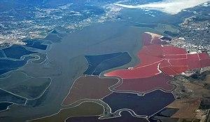 San Francisco Bay - Wikipedia