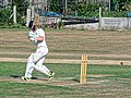 Southwater CC v. Chichester Priory Park CC at Southwater, West Sussex, England 053.jpg