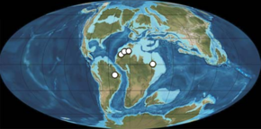 Locations of spinosaurid fossil discoveries marked with white circles on a map of Earth during the Albian to Cenomanian of the Cretaceous Period
