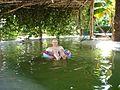 Spli in footsteps' freshwater pool (316659221).jpg