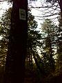 Spokane, WA, USA - panoramio (15).jpg