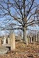 Spomenici na seoskom groblju u Nevadama (1).jpg