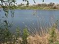 Sredniy Egorlyk River, Russia.jpg
