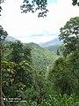 Sri Lankan Beauty By Chandupa Weerakkody.jpg
