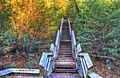 Stairway To Fall (128790785).jpeg