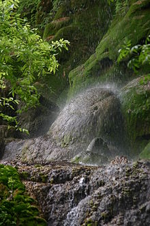 Rock Springs Wi >> Colorado Bend State Park - Wikipedia