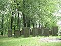Stary cmentarz - Polska lato 2007.JPG