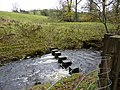 Stepping stones over Twiston Beck - geograph.org.uk - 1580672.jpg