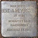 Stolperstein Bertha Meyerstein Jena 2014.jpg