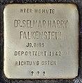 Stolperstein für Dr. Selmar Harry Falkenstein (Köln).jpg