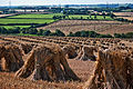 Stooks near South Molton.jpg