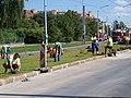 Strašnice, Průběžná, rekonstrukce TT, pokládka trávy (05).jpg