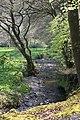 Stream across the flood plain - geograph.org.uk - 412024.jpg