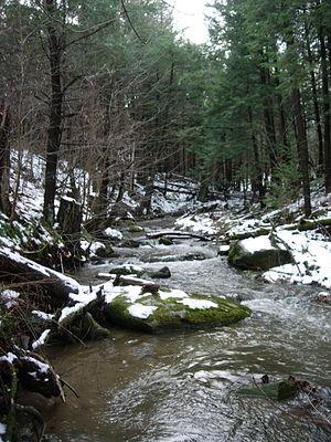 Fairfield, Vermont - A stream in Fairfield