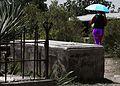 Strolling in a Graveyard (7701947442).jpg