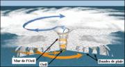 Structure d'un cyclone tropical: Bandes de pluie concentriques, l'Œil et son mur. Les flèches jaunes et bleues montrent le mouvement de l'air et des nuages. (Source: NOAA).