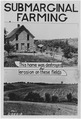 Submarginal farming advertisment - NARA - 286159.tif