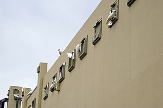 Sulphur-crested cockatoo - Numerous cockatoos causing damage to a shopping centre façade