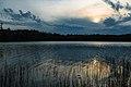 Summer Sunset on Lake Itasca - Itasca State Park, Minnesota (41626090131).jpg