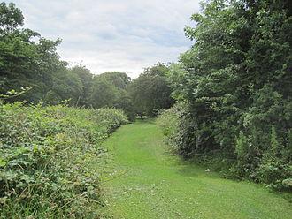 Swan Lane Open Space - Swan Lane Open Space
