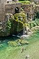 Tarn River in Saint-Chely-du-Tarn 07.jpg