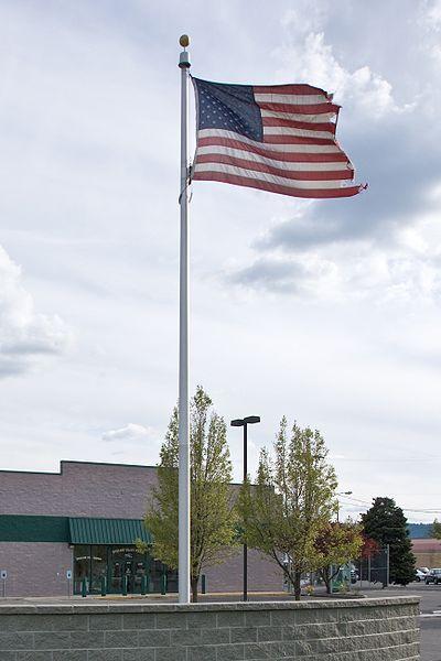 File:Tattered Flag.jpg