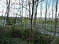 Taunton Deane, The M5 Motorway - geograph.org.uk - 1243567.jpg