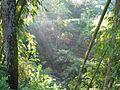 Tawangmangu 2009 Bennylin 049.jpg