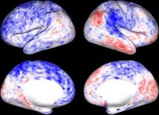 Resting state fMRI medical procedure