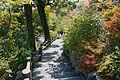 Tenryuji Kyoto15n4592.jpg