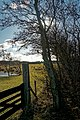 Texel - Nature Path 'Alloo' - View WSW III.jpg