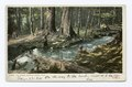 The Brook, Roaring Brook, Mich (NYPL b12647398-68593).tiff