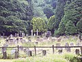 The Churchyard at St Gregory's Minster - geograph.org.uk - 580322.jpg