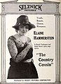 The Country Cousin (1919) - 2.jpg