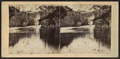 The Falls, from the Basin or Whirpool, from Robert N. Dennis collection of stereoscopic views 5.png