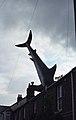 The Headington Shark, New High St, Oxford (250129) (9456184372).jpg