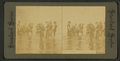 The Merry bathers, Palm Beach, Florida, from Robert N. Dennis collection of stereoscopic views.png