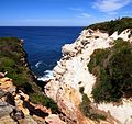 The Royal National Park Coast Track - panoramio (9).jpg