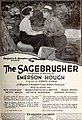 The Sagebrusher (1920) - 7.jpg
