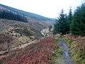 The Wye Valley Walk beside Afon Hore in Hafren Forest - geograph.org.uk - 1121703.jpg