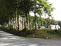 Thiouville (Seine-Mar.) paysage.jpg