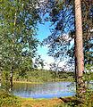 Tikkakoski - Myllylampi2.jpg