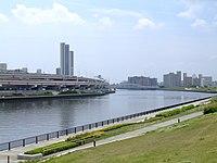 Tokyo-sumida-river-from-suijin-bridge.jpg