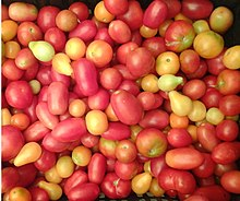 tomate para la próstata desmayada